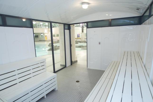 scandia hybrid steam room